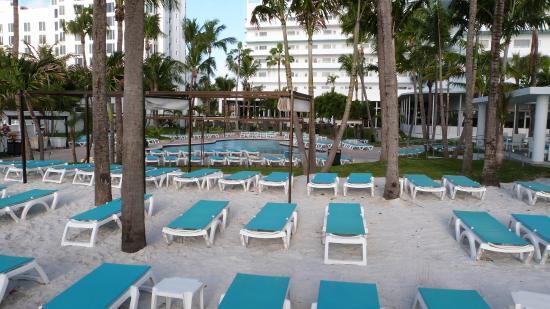 piscine picture of hotel riu plaza miami beach miami. Black Bedroom Furniture Sets. Home Design Ideas
