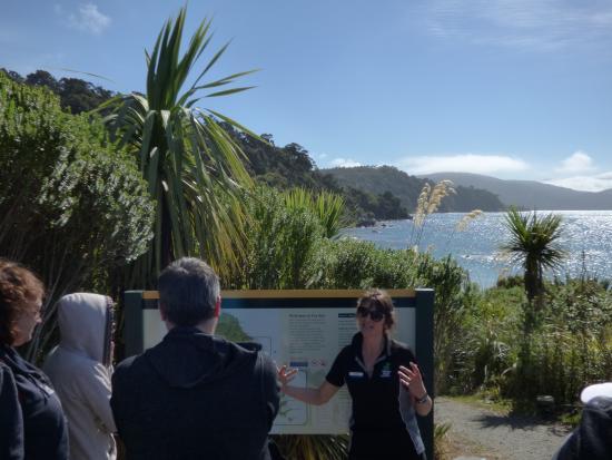 Village & Bays Tours - Stewart Island Experience : Stewart Island Experience Tour