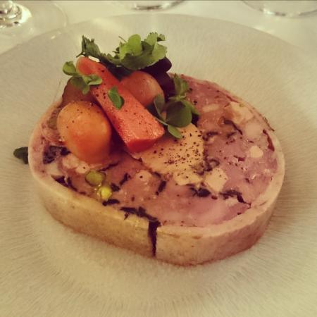 galantine de canard foie gras pistache aux agrumes picture of brasserie thoumieux paris. Black Bedroom Furniture Sets. Home Design Ideas