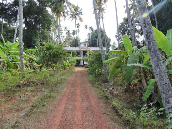 La Maison de Varkala: vue depuis le portail