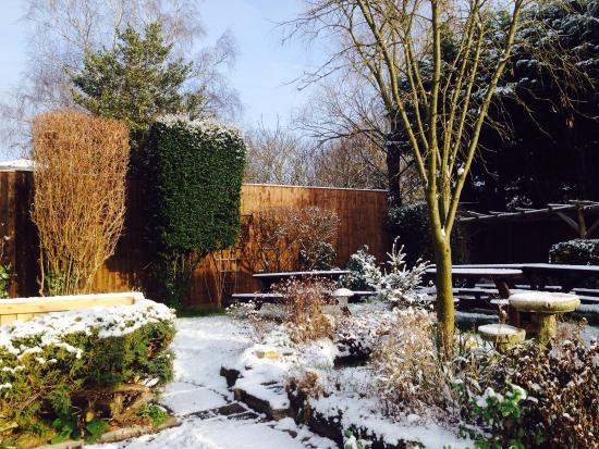Kingston Bagpuize, UK: Snowy garden