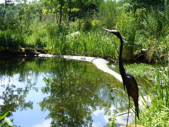 Domaine de Gavaudun : Pond near our Villa