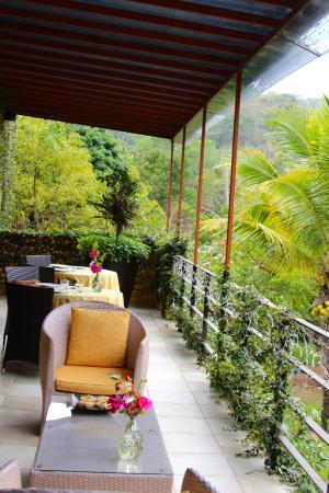 Villa Azalea - Luxury B&B: Dinning area