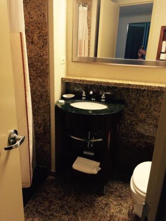 Hyatt Regency O'Hare Chicago: Tiny bathroom, stand up shower to the left