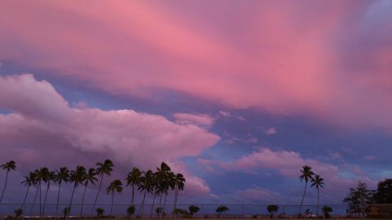 Honu'ea International Hostel Kauai: last night