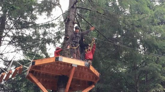 Tree Stop 2 Picture Of Camp Dakota Scotts Mills