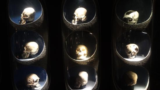 Museo de Arqueologia Ganot-Peschard