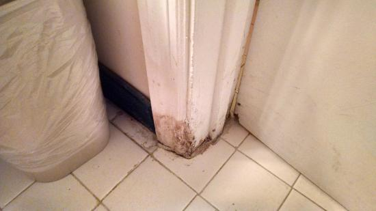 Quality Inn St. Helena : Nasty bathroom door