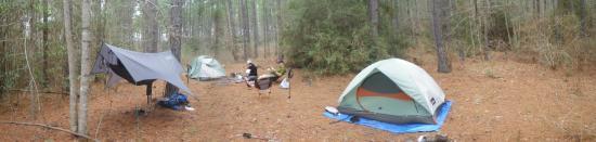 Davy Crockett National Forest Camping