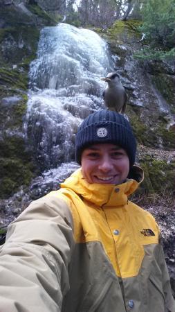 Rainbow Mountain: De legesyge fugle følger dig næsten hele turen.
