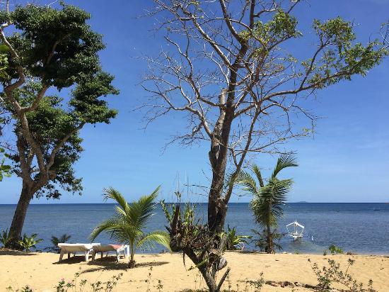 Cashew Grove Beach Resort: beach