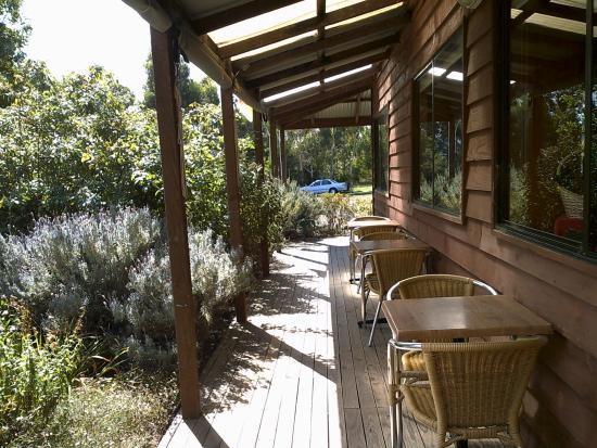 Sorell Fruit Farm: Just outside the cafe