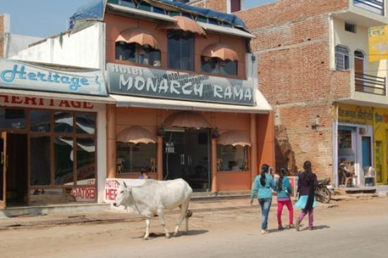 Monarch Rama: Front from the street