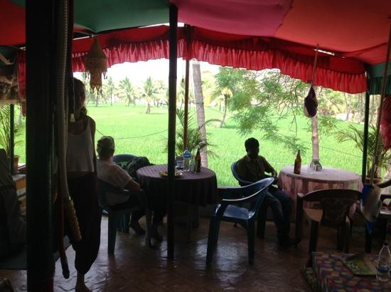 Raju Guest House: View across the paddy fields from the Evergreen Cafe