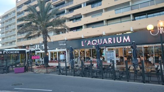 l ext 233 rieur du restaurant picture of restaurant l aquarium cyprien tripadvisor