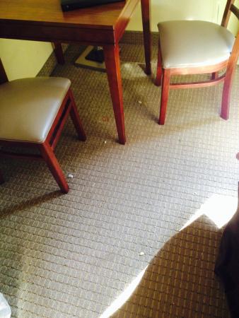 La Quinta Inn & Suites Charlottesville: Not vacuumed