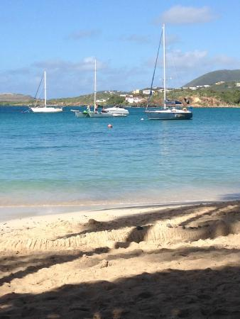 Benner, Saint Thomas: View from beach.