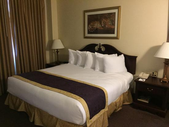 The Cook Hotel and Conference Center at LSU: Bedroom