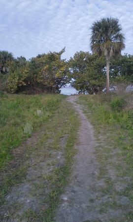 Great Florida Birding and Wildlife Trail: path opening to the water