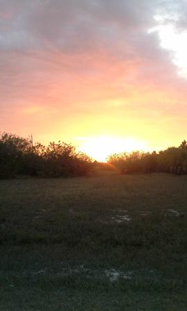 Great Florida Birding and Wildlife Trail: sunset