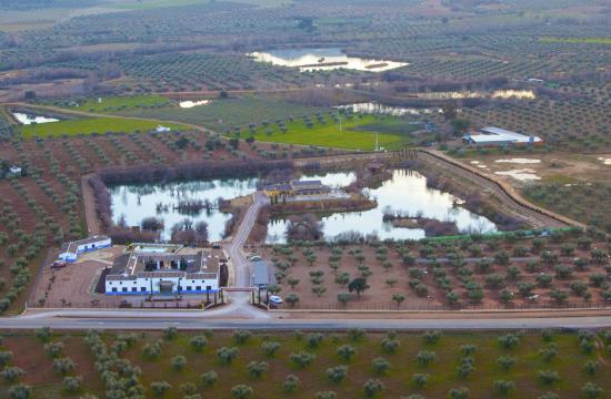 Vista a rea del complejo picture of complejo turistico fuente taray malagon tripadvisor - El olivar de albarizas ...