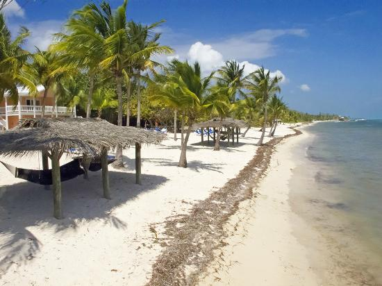 Little Cayman Beach Resort: The resort
