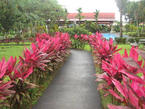 Arenal Country Inn: To the pool