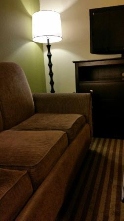 Holiday Inn Express Sarasota I-75: Old sofa with discoloured cushion