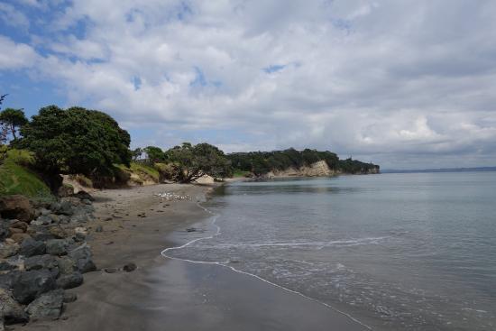 Little Manly Beach, Shakespear Regional Par