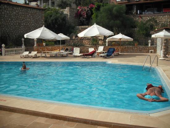 3T Hotel : havuz