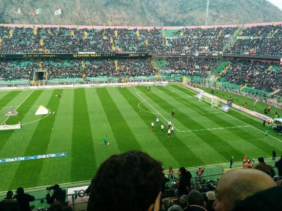 Stadio Renzo Barbera 사진
