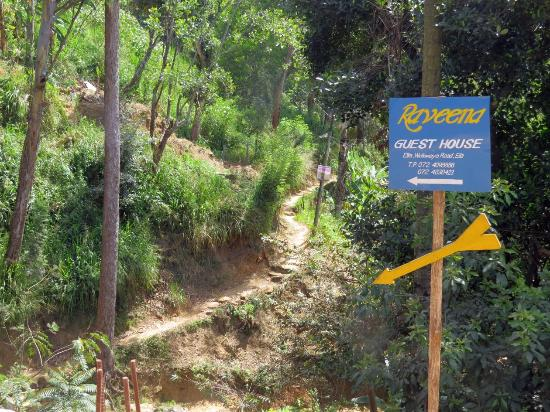 Raveena Guest House: The Shortcut to Raveena House from Town