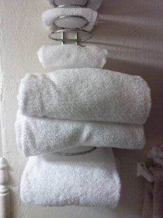 El Colorado Lodge: It's the little things... like fluffy towels!