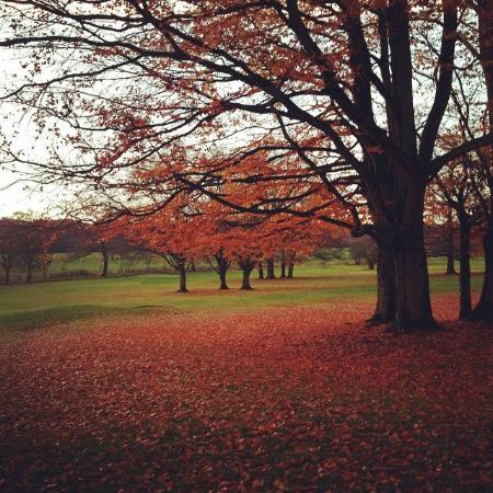 Coventry, UK: Autumn