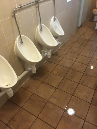 Flooded Gents Toilets In The Farmhouse Yate