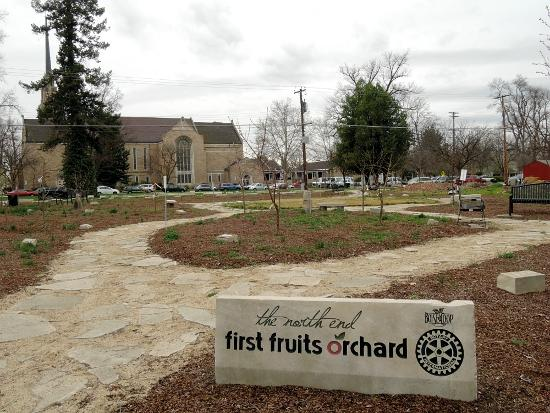 The North End First Fruits Orchard Boise
