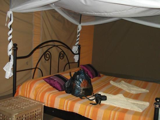 Ikoma Wildcamp : lovely comfortable bed !