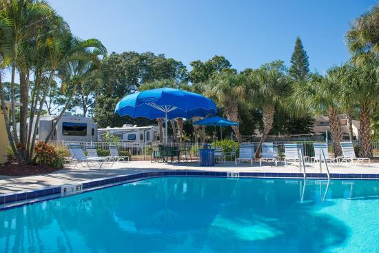 Pool Area Photo De Vacation Village Rv Resort Largo Tripadvisor