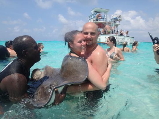 Cayman Islands Turtle Farm Prices