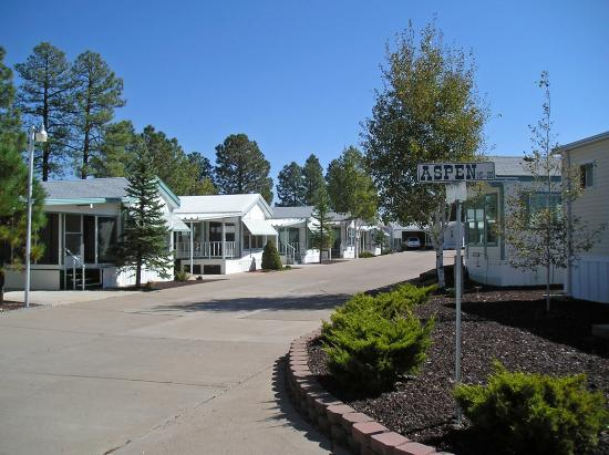 arizona garden picture of venture in rv resort show low. Black Bedroom Furniture Sets. Home Design Ideas