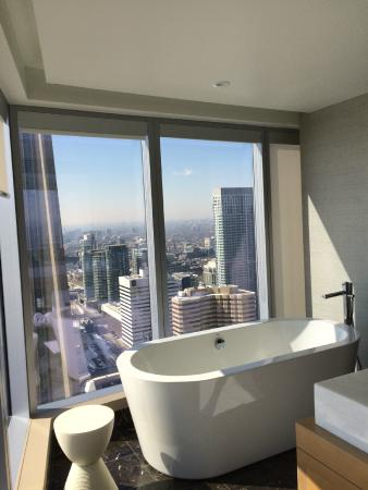 Delta Hotels By Marriott Toronto View From Bath Room
