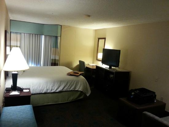 Hampton Inn & Suites South Bend: Typical room with king size bed and sofa.