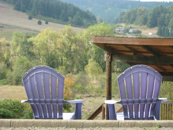 Silvan Ridge Winery : Enjoy the view