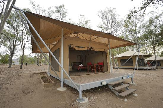Lake Somerset Holiday Park: Safari tent
