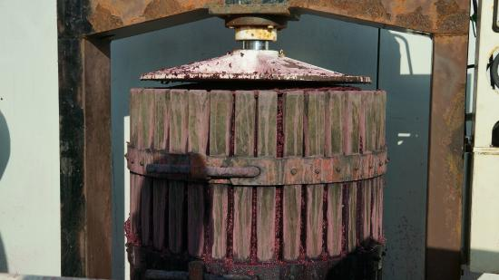 Sant'Agnese Farm : Press