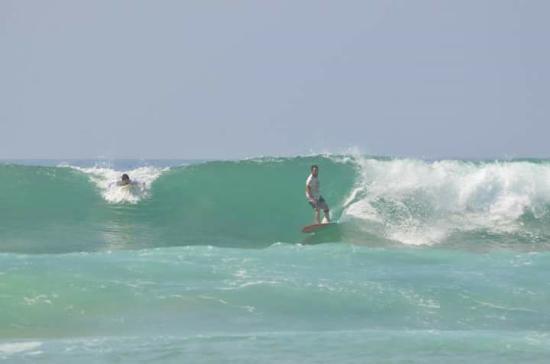 Bildergebnis für weligama surfen