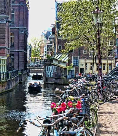 Рибай - Picture of Cafe 'T Gasthuys, Amsterdam - TripAdvisor