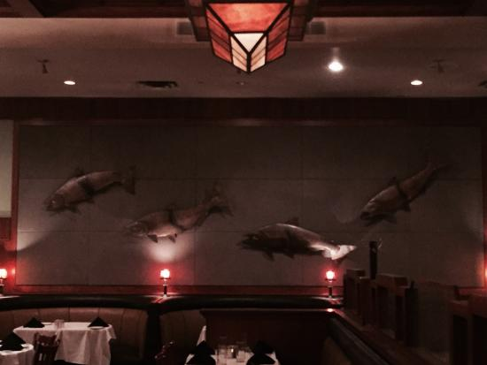 McCormick & Schmick's Seafood: Four fishes