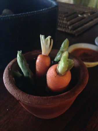 Jala Restaurant : Vegetable served before entree, so cute.