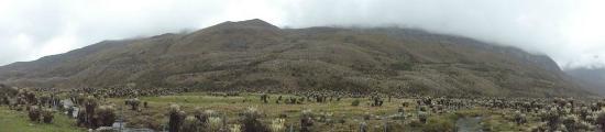Guican, Colombia: Un gran valle antes de subir a la nieve